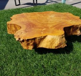 Table of Black Poplar`s Cut SP303