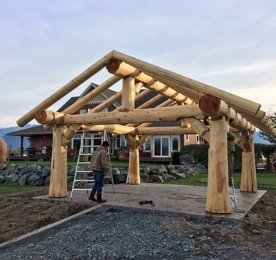 AWNING ARBOR OF WILD LOG