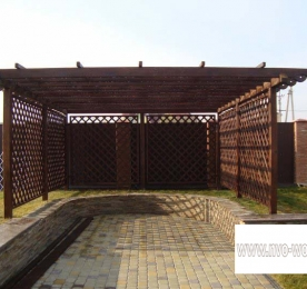 Reticulated Awning of Wood For Car (0143)