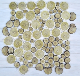 Набор срезов. Уксусное дерево (100 шт.)