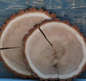 Спилы дерева. Диаметры от 1,5 см до 40 см.